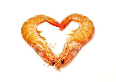 shrimps isolated on a white background photo