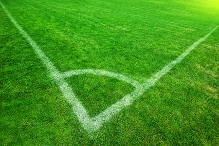 acute angle: Corner of Soccer Field