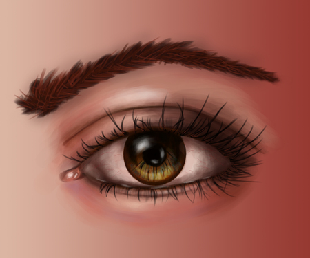 cornea: colored fragment of the human body figure, eyes, detailed illustration