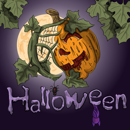 spider web: vector label for holiday halloween with holiday elements