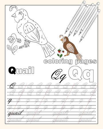 vector illustration coloring page of English alphabet with animal drawings with string for writing English letters EPS 10