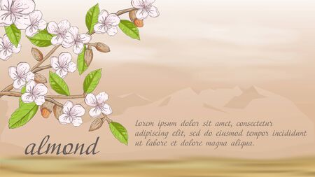 plant banner nature plant almond branch fruit nuts flowers for decoration design on the background of mountains in the desert with clouds with a place for text and title vector EPS 10 Ilustração