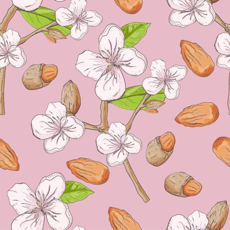 seamless plant pattern branches nuts almonds for decoration design flowers leaves background isolated vector