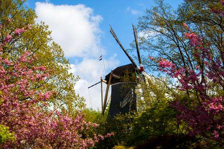 keukenhof: Spring in park, Keukenhof, Garden of Europe Stock Photo