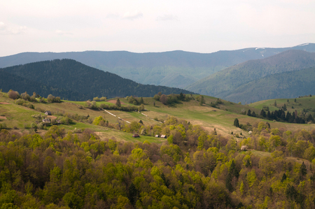 Carpathian mountains and forests landscape Stock Photo