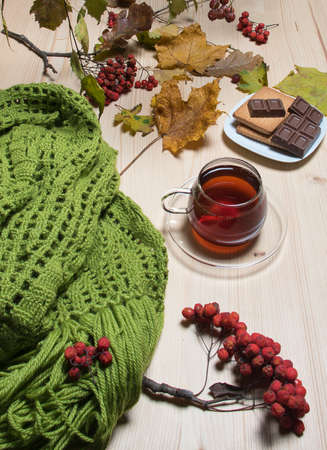 Still life with tea and scarf on the garden table in autumn