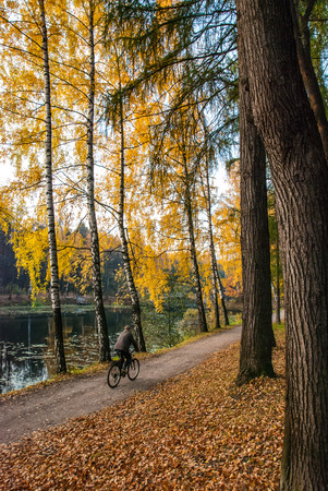 A man on a bicycle on the autumn path along the pond