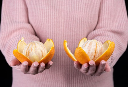 Two peeled oranges on the palms of a girl in a pink sweater. Close up Stok Fotoğraf