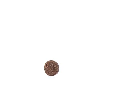 A grain of allspice isolated on a white background. Jamaican allspice. Copy space Stock Photo