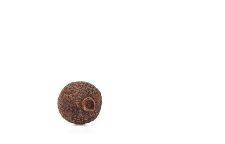 A grain of allspice isolated on a white background. Jamaican allspice. Copy space. Macro shot