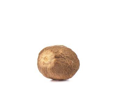 Whole nutmeg isolated on white background. Macro shot. Copy space