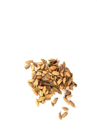 Cardamom seeds isolated on white background. Cardamom boxes are the seeds of an Indian tree from the ginger family. Copy space. Top view
