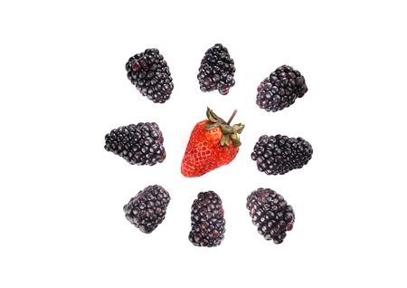 Ripe blackberries and strawberry isolated on white background. Around the strawberry berries blackberries. View from above.