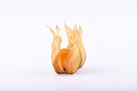 Beautiful ripe physalis isolated on a white background. Close up. Copy space.