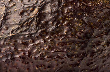 Macro shot of an unpeeled avocado fruit. Peel texture of avocado. Background of unpeeled avocado.