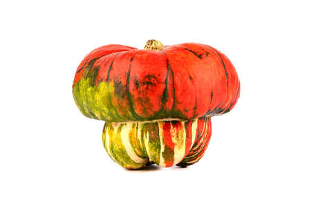 Ripe pumpkin in the form of a mushroom isolated on a white background. Pumpkin of an unusual shape.