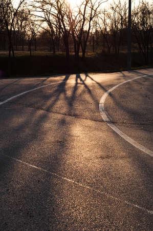 Asphalt Road Surface With Line photo