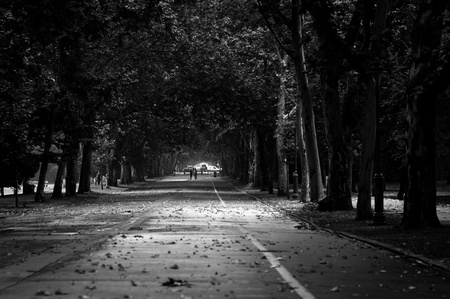 Black and white pathway in the park Stock Photo