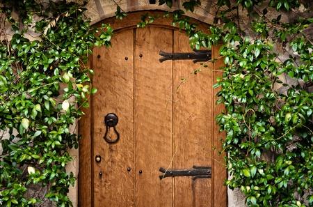 puertas de madera: La puerta tradicional de madera con planta verde Foto de archivo