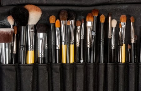 black makeup: Makeup brushes in leather case Stock Photo