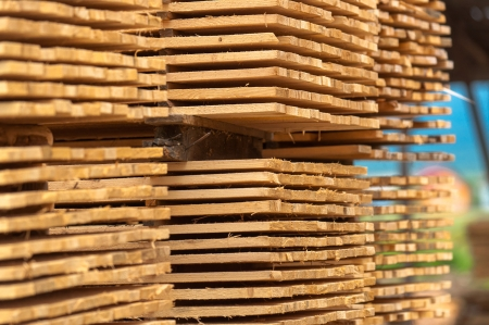 heap up: Stacked up wood at construction site Stock Photo