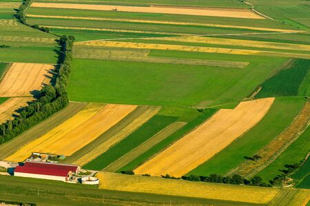 Green fields aerial view before harvest at summer photo