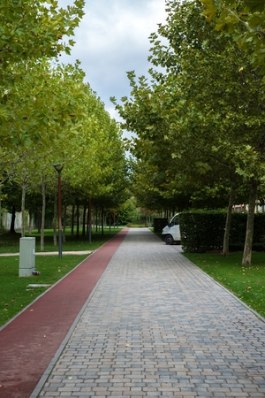 walking path: Walking path in the empty park daytime