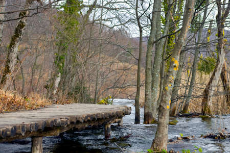 swampland: Wooden path trough the lakes angle shot