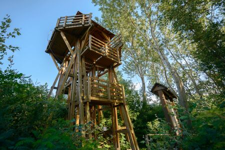 High lookout tower in the forest angle shot Stock Photo
