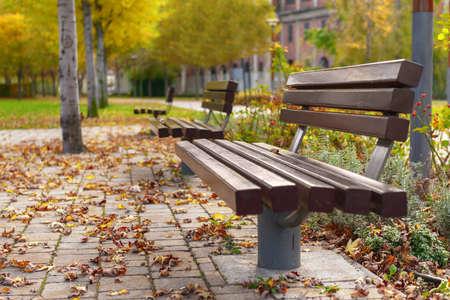 leasure: Stylish bench in autumn park closeup photo Stock Photo