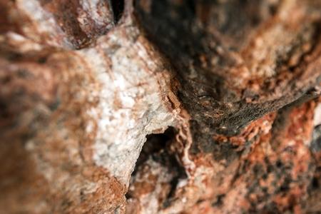 rock salt: Rock salt on stones at the seaside