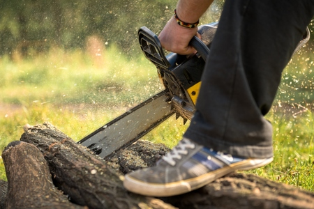 gasoline powered: Gasoline powered professional chainsaw in the hands of a man Stock Photo