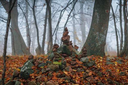 wiccan: Autumn day in the enchanted forest at fall