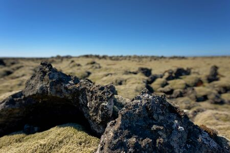 Iceland lava field covered with green moss from volcano eruption