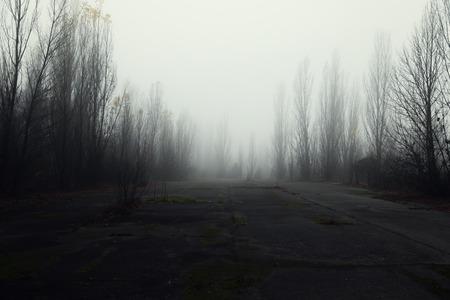 Donkere verlaten weg in het boshoekschot Stockfoto