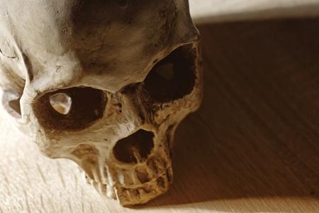 Skull of the reaper closeup photo