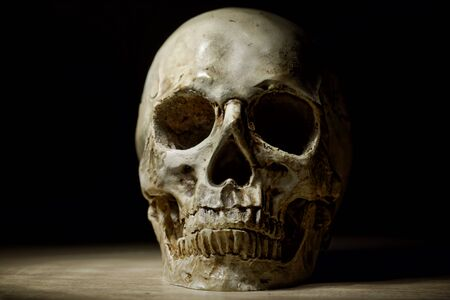 Skull of the reaper close up photo