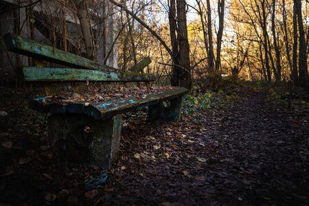 Old destroyed bench next to path angle shot Reklamní fotografie