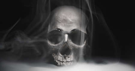 Black skull in the darkness with smoke and fog closeup