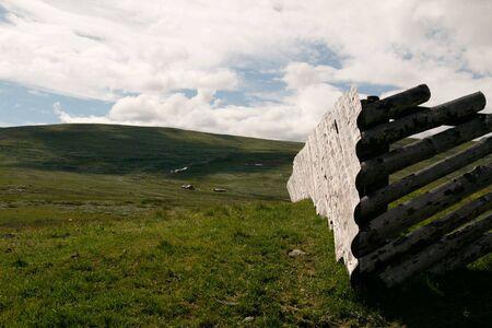montane: Summer at Hardangervidda