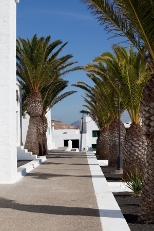 Lanzarote Stock Photo - 15345137