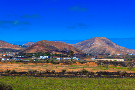 Green cultivated landscape in the valleys of Lanzarote.