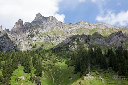 A beautiful summer day in the Austrian Alps Standard-Bild