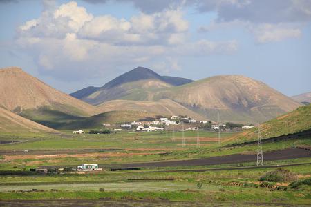 Volcanic, but green landscape on Lanzarote. Standard-Bild