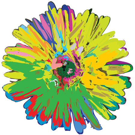 isolated coloured flower
