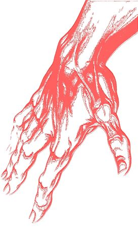 isolated drawing of human hand photo