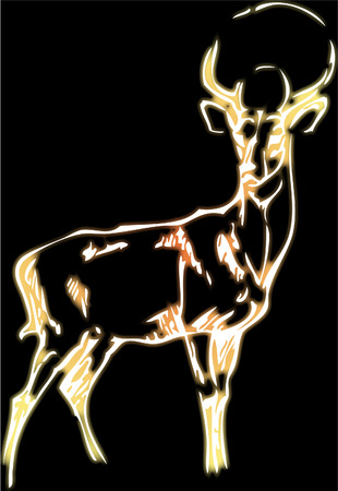 simple drawing of a deer with vector effect Stock Vector - 4211590