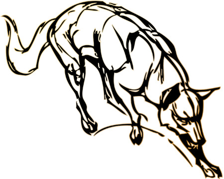 simple drawing of a dog with vector effect Vector