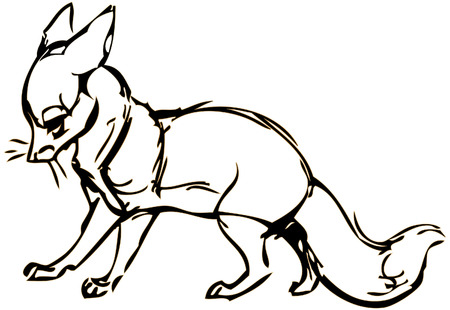 simple drawing of a fox with vector effect Illustration