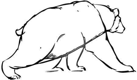 simple drawing of a bear with vector effect